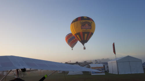 Balloons at dawn in Lakeland